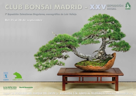 XXV Exposición Club Bonsái Madrid